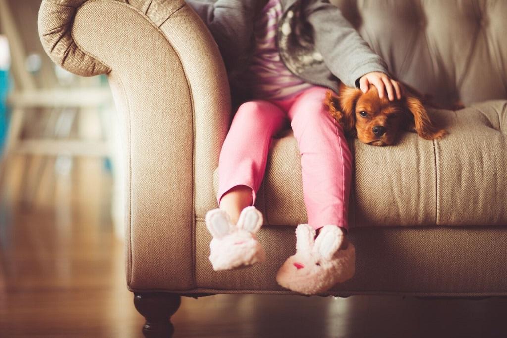Порядок начисления алиментов на ребенка в 2019 году: с неработающего, на двух детей, на детей от разных браков
